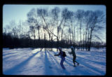 Institute pond and cross country skiers