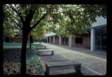 Historical Studies-Social Science Library courtyard
